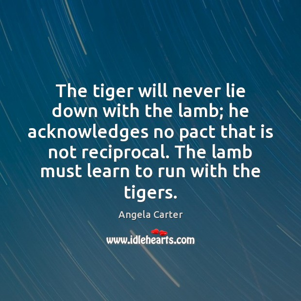 Image, The tiger will never lie down with the lamb; he acknowledges no