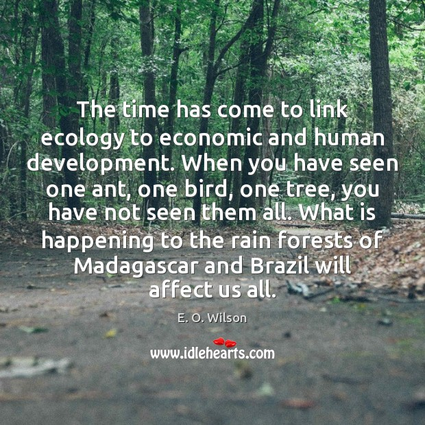 The time has come to link ecology to economic and human development. Image