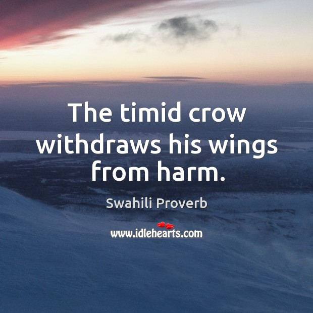 Image, The timid crow withdraws his wings from harm.