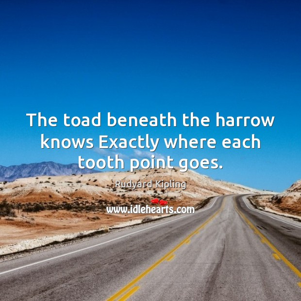 Image, The toad beneath the harrow knows Exactly where each tooth point goes.