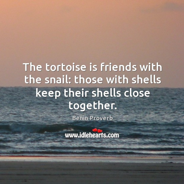 The tortoise is friends with the snail: Benin Proverbs Image