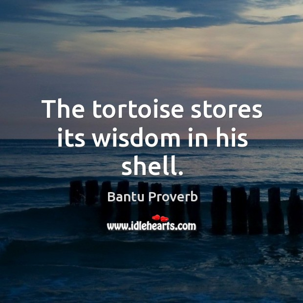 The tortoise stores its wisdom in his shell. Bantu Proverbs Image