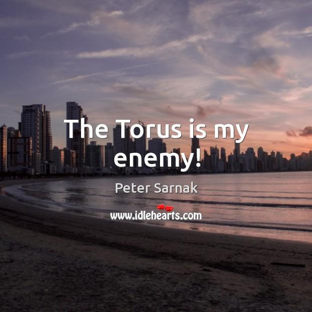 The Torus is my enemy! Image