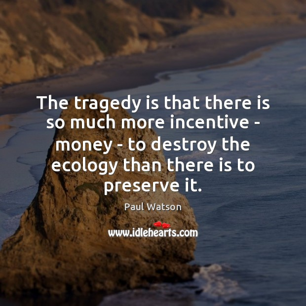 The tragedy is that there is so much more incentive – money Paul Watson Picture Quote