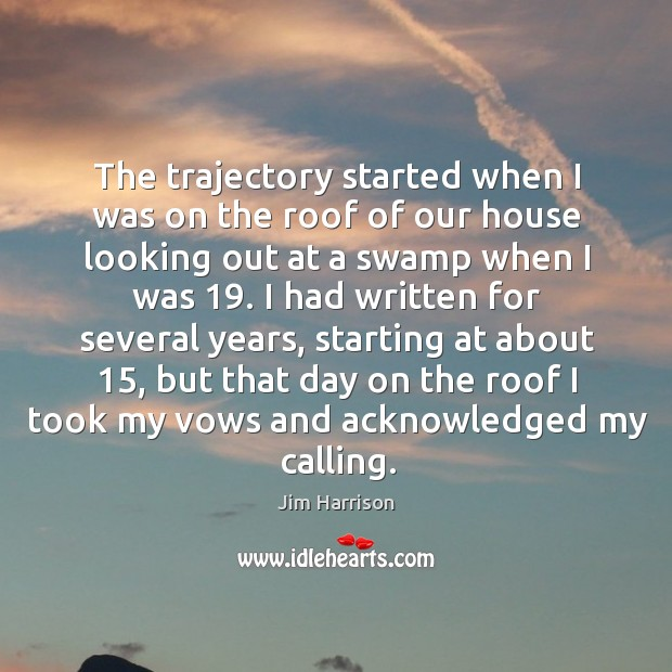 The trajectory started when I was on the roof of our house looking out at a swamp when I was 19. Image