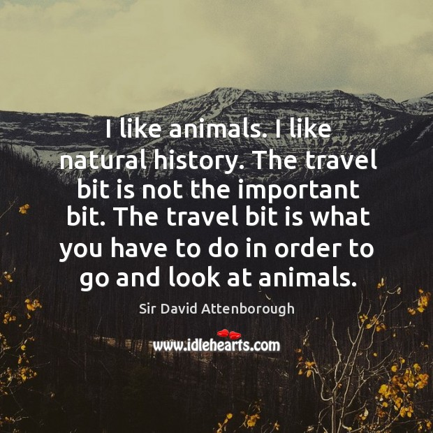 The travel bit is what you have to do in order to go and look at animals. Image
