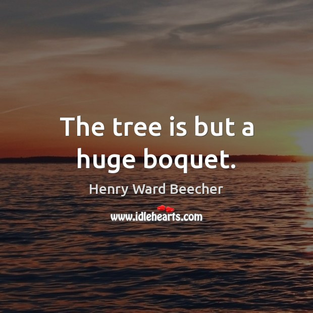 The tree is but a huge boquet. Image