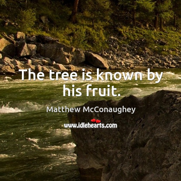 Image, The tree is known by his fruit.
