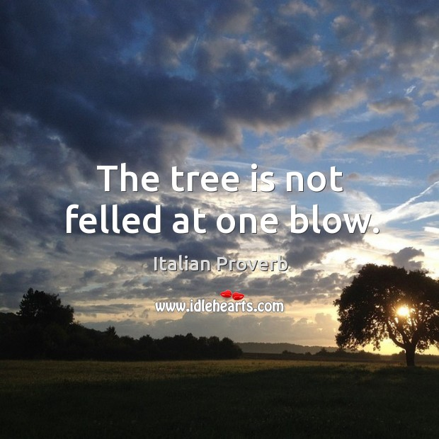 Image about The tree is not felled at one blow.