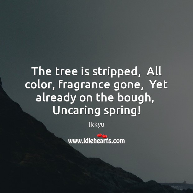 Image, The tree is stripped,  All color, fragrance gone,  Yet already on the