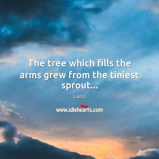 Image, The tree which fills the arms grew from the tiniest sprout…