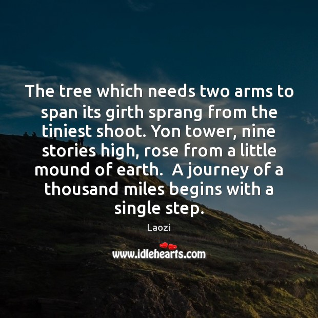 The tree which needs two arms to span its girth sprang from Image