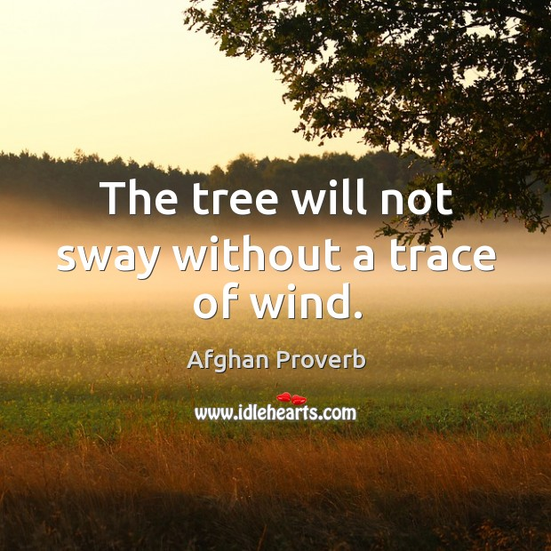 Image, The tree will not sway without a trace of wind.