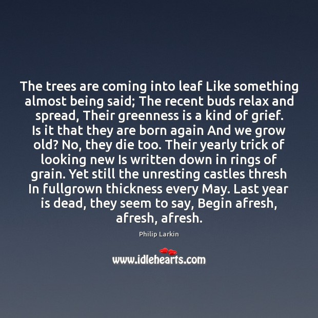 The trees are coming into leaf Like something almost being said; The Philip Larkin Picture Quote