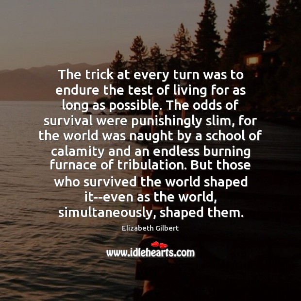 The trick at every turn was to endure the test of living Elizabeth Gilbert Picture Quote