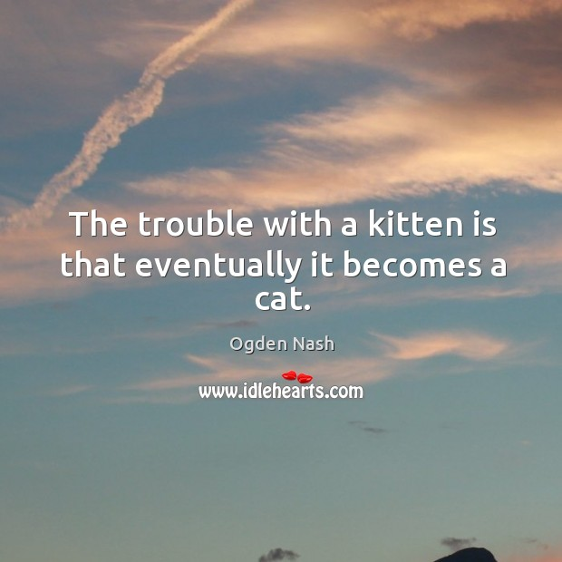 Image, The trouble with a kitten is that eventually it becomes a cat.