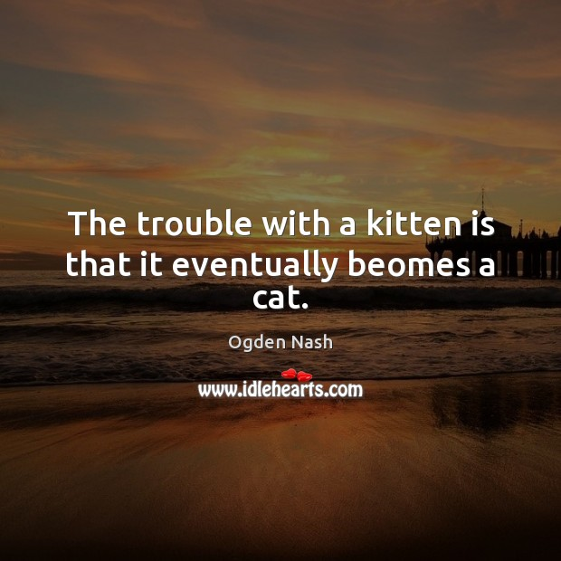The trouble with a kitten is that it eventually beomes a cat. Ogden Nash Picture Quote