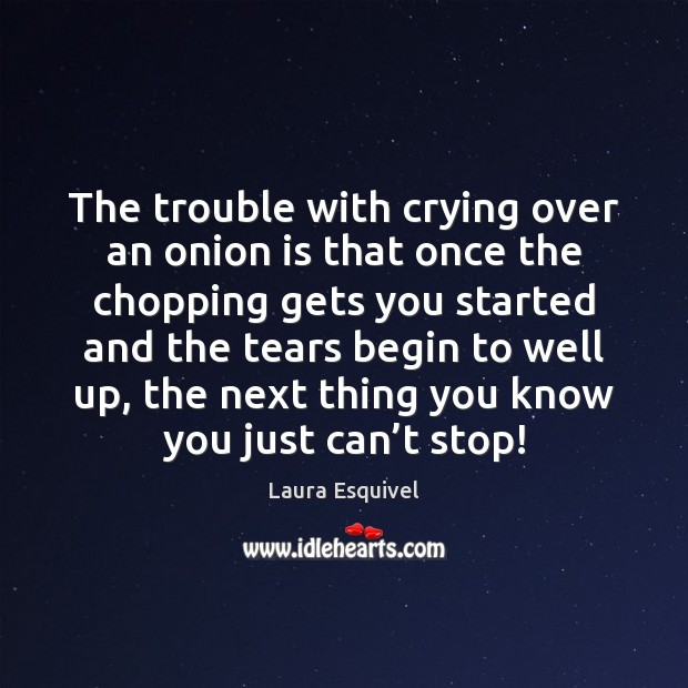 The trouble with crying over an onion is that once the chopping Image