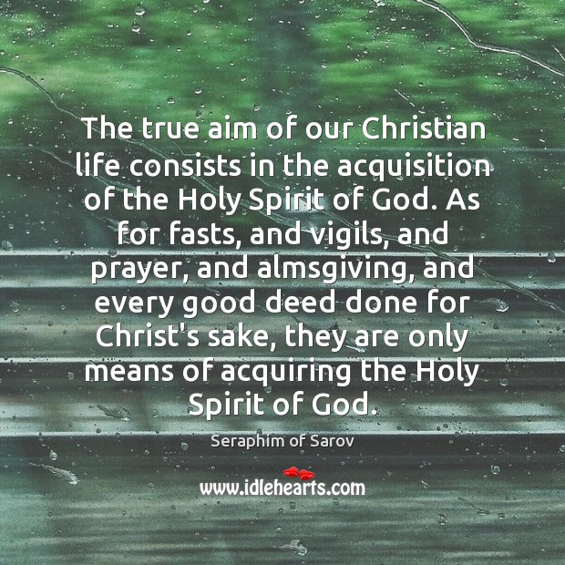 Image, The true aim of our Christian life consists in the acquisition of