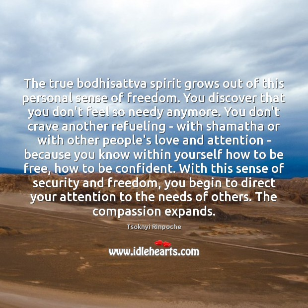 The true bodhisattva spirit grows out of this personal sense of freedom. Tsoknyi Rinpoche Picture Quote