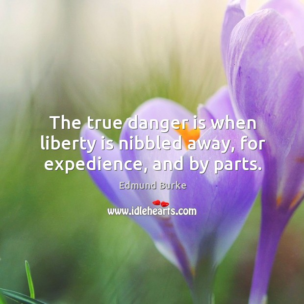 Image, The true danger is when liberty is nibbled away, for expedience, and by parts.