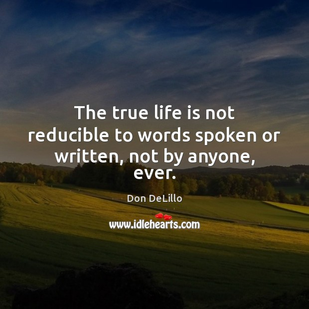 Image, The true life is not reducible to words spoken or written, not by anyone, ever.