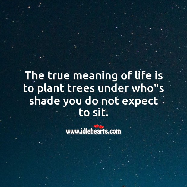 """The true meaning of life is to plant trees under who""""s shade you do not expect to sit. Image"""