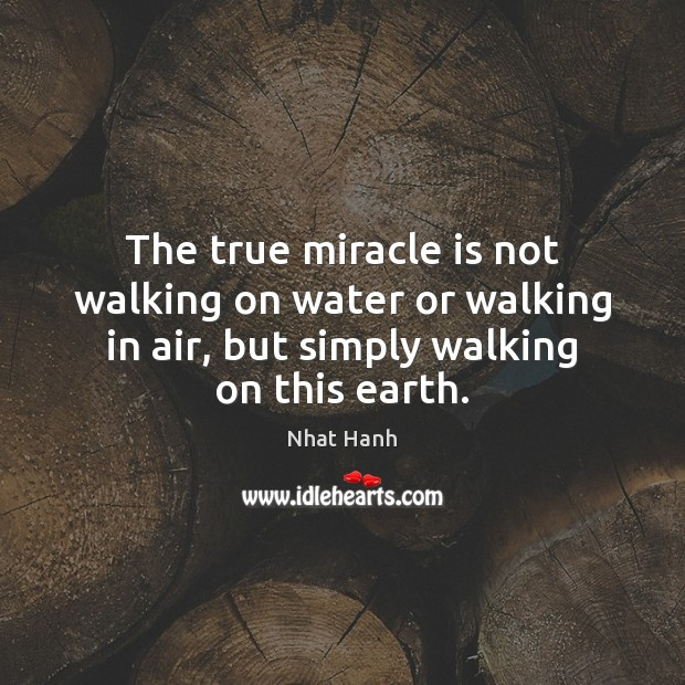 Image, The true miracle is not walking on water or walking in air,