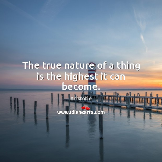 The true nature of a thing is the highest it can become. Image