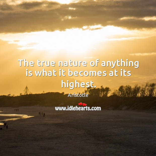 Image, The true nature of anything is what it becomes at its highest.