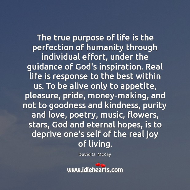 The true purpose of life is the perfection of humanity through individual Image