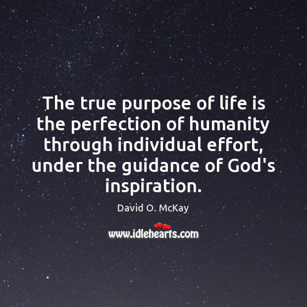 The true purpose of life is the perfection of humanity through individual David O. McKay Picture Quote