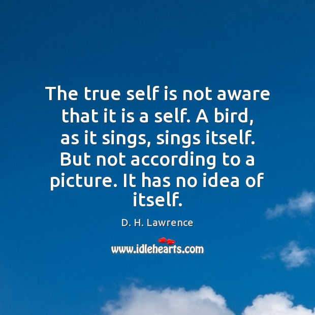 The true self is not aware that it is a self. A Image
