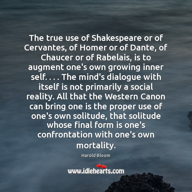 The true use of Shakespeare or of Cervantes, of Homer or of Harold Bloom Picture Quote