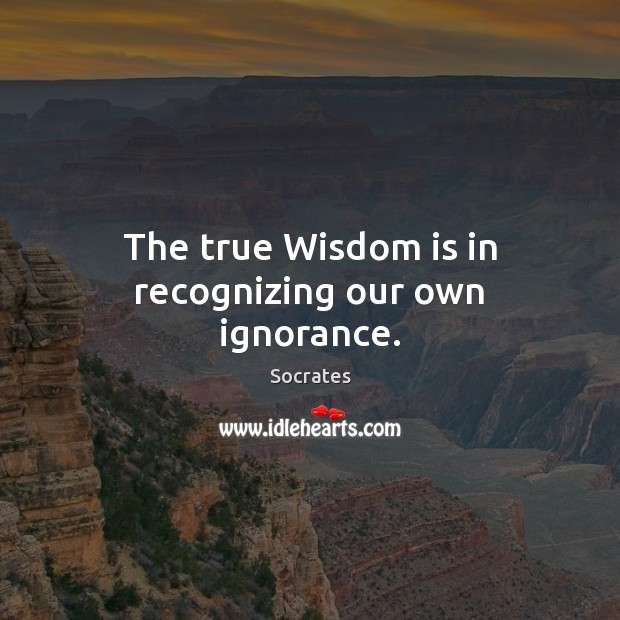 Image, The true Wisdom is in recognizing our own ignorance.