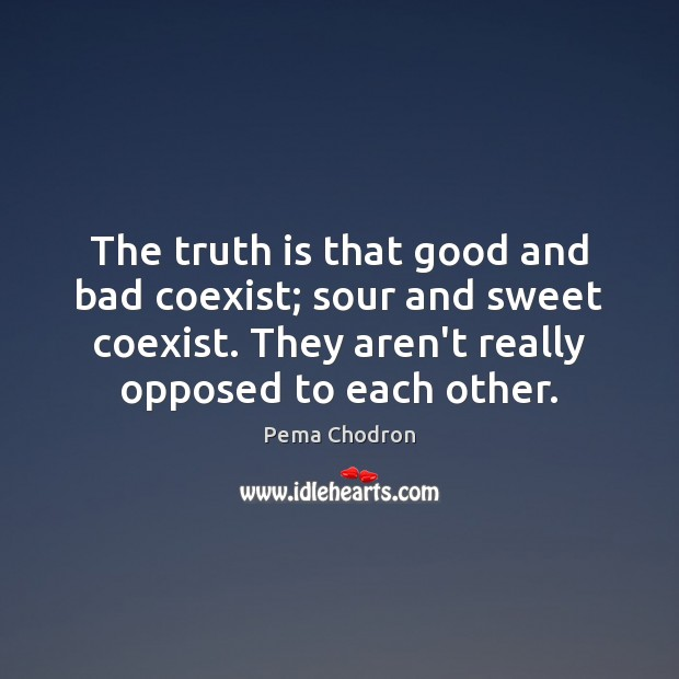 Image, The truth is that good and bad coexist; sour and sweet coexist.