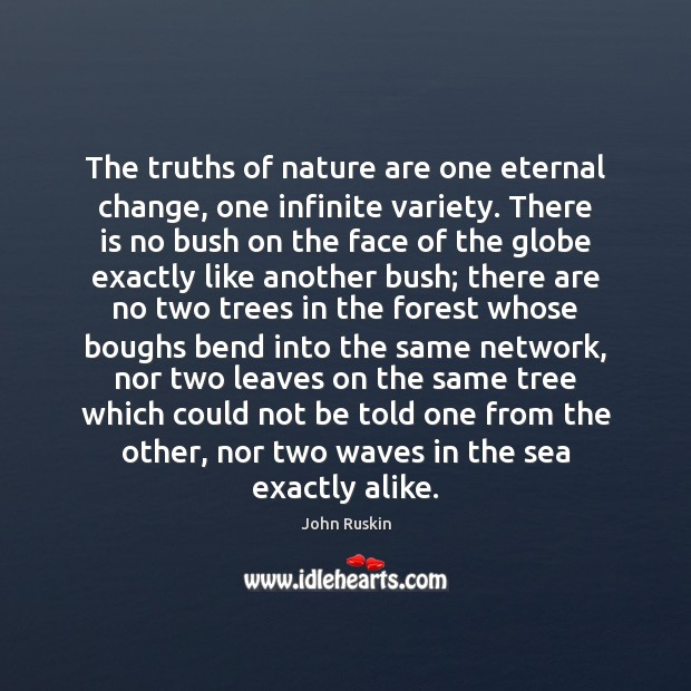 The truths of nature are one eternal change, one infinite variety. There Image