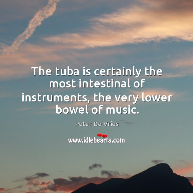 The tuba is certainly the most intestinal of instruments, the very lower bowel of music. Image