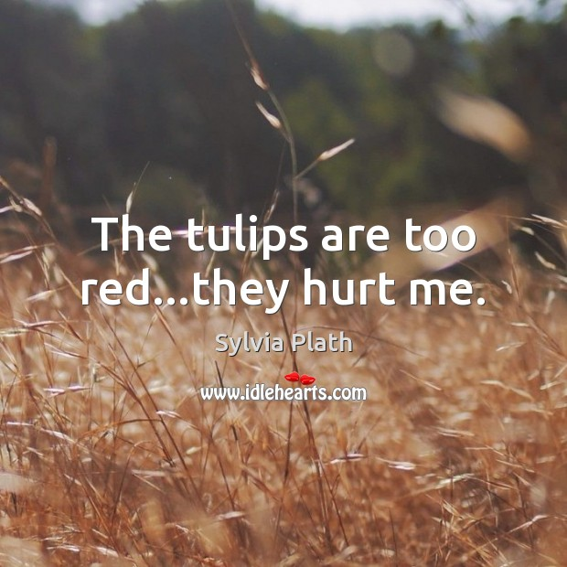 The tulips are too red…they hurt me. Image