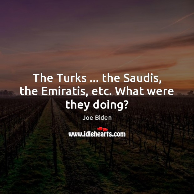 The Turks … the Saudis, the Emiratis, etc. What were they doing? Image