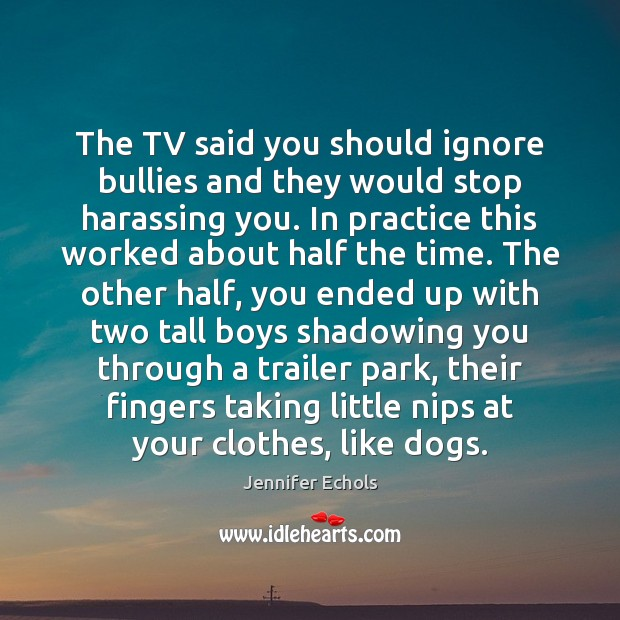 The TV said you should ignore bullies and they would stop harassing Image