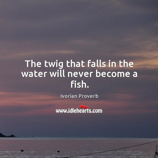Ivorian Proverbs