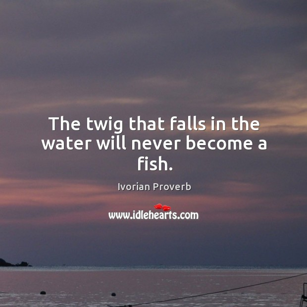 The twig that falls in the water will never become a fish. Ivorian Proverbs Image