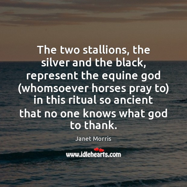 The two stallions, the silver and the black, represent the equine God ( Image