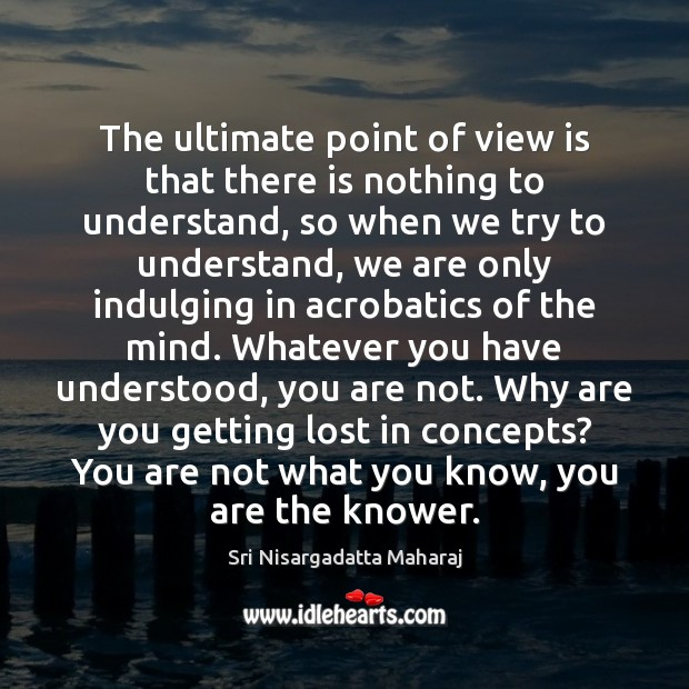 Image, The ultimate point of view is that there is nothing to understand,