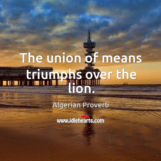 The union of means triumphs over the lion. Algerian Proverbs Image
