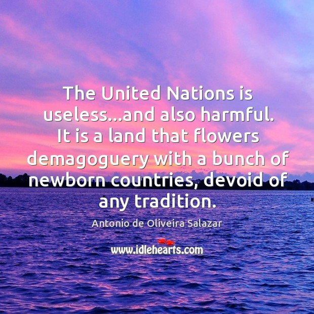 The United Nations is useless…and also harmful. It is a land Image