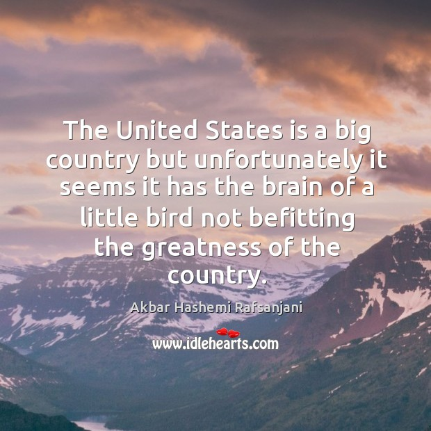 The united states is a big country but unfortunately it seems it has the brain of a Akbar Hashemi Rafsanjani Picture Quote