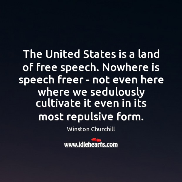 Image, The United States is a land of free speech. Nowhere is speech