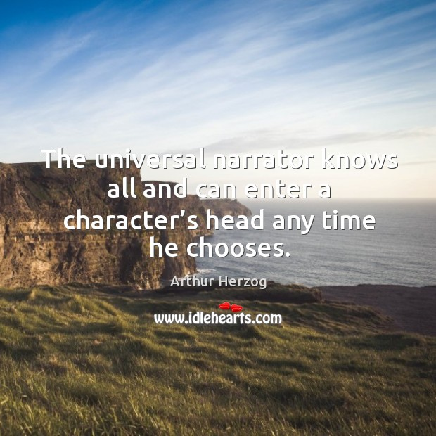 Image, The universal narrator knows all and can enter a character's head any time he chooses.